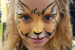 Ginger-cat-face-painting