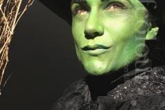 wicked-witch-1-copy